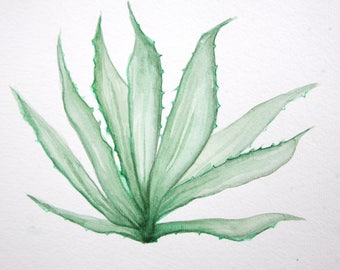 Original 8 x 8 inch watercolor painting of a cactus by Meredith O'Neal