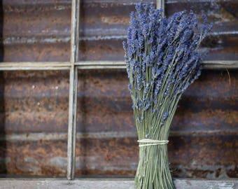 lavender, dried lavender bokay,  2017 CROP dried lavender, dried flowers, lavender bouquet, wedding bouquet, wedding lavender, blue lavender