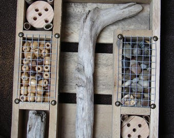 Insect / Bug House