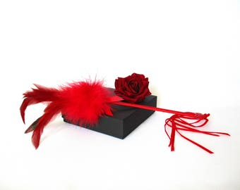 Red Feather Duster Caresses Feathers and Marabout