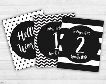 Baby Milestones Cards Signs - First Year - Baby Shower Gift - Black and White