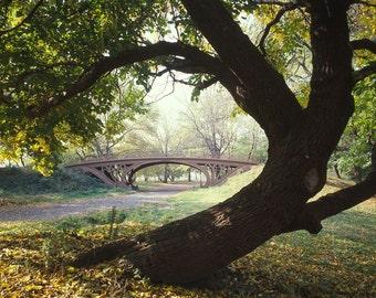 Central Park Bridge, Gothic Arch