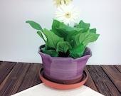 Medium planter, flower po...