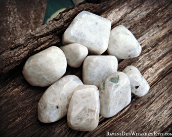 Rainbow Moonstone (Tumbled) ~ One Stone ~ Cleansed and Charged