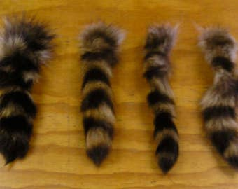 4 Raccoon Tails