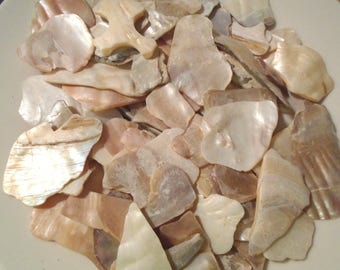 4oz Ivory Beige Large Crushed Seashells Mix Vase Filler Dyed Abalone Shells Crafts Jewelry Beach Decor Mosaics
