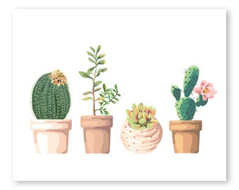Potted Succulents Etsy