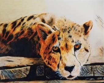 Cheetah - Print