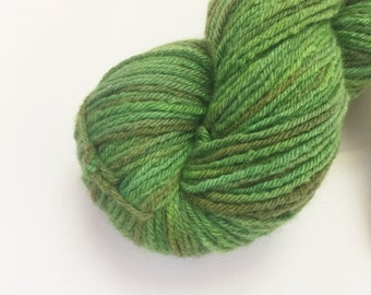 Got My Mind On My Money - 100% Merino Worsted Weight Hand Dyed Yarn