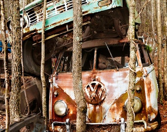 VW Bus with Truck Stacked on top in Trees Photograph