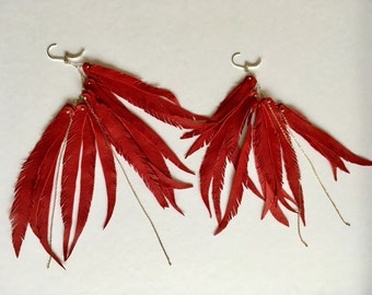 Red Leather Feathers