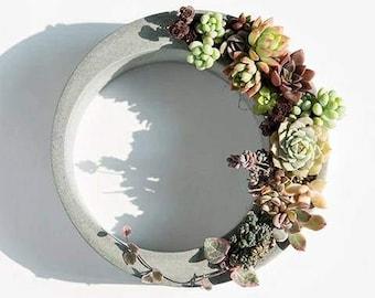 Crescent moon concrete succulents planter