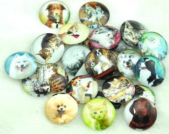 25mm Round Handmade Photo Glass Cabochon - animal --A029