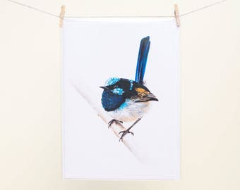Superb Fairywren - Blank Greeting Card - Australian Bird Art