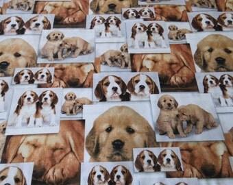 Cotton dogs of Puppys Öko-TeX