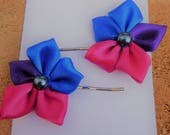 Limited Edition 2017 Bisexual Hair Clips LGBT