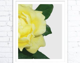Yellow Flower Art Print, Flower Art , Flower Home Decoration, Flower Pic, Flower Prints,Nature Art Prints, Nature Art Print, Flower Image