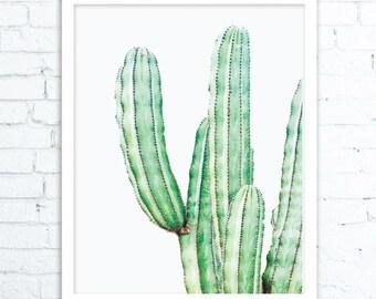 Cactus Print Art, Cactus Prints, Cactus Printable Art, Cactus Poster, Cacti Decor, Cactus Photography, Cacti Art, Cactus Prints,Cactus