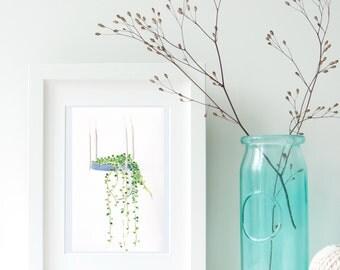 Hanging Plant - Print of Original Painting | Watercolour and Ink Painting | House plant, Hanging Plant, Watercolor, Print
