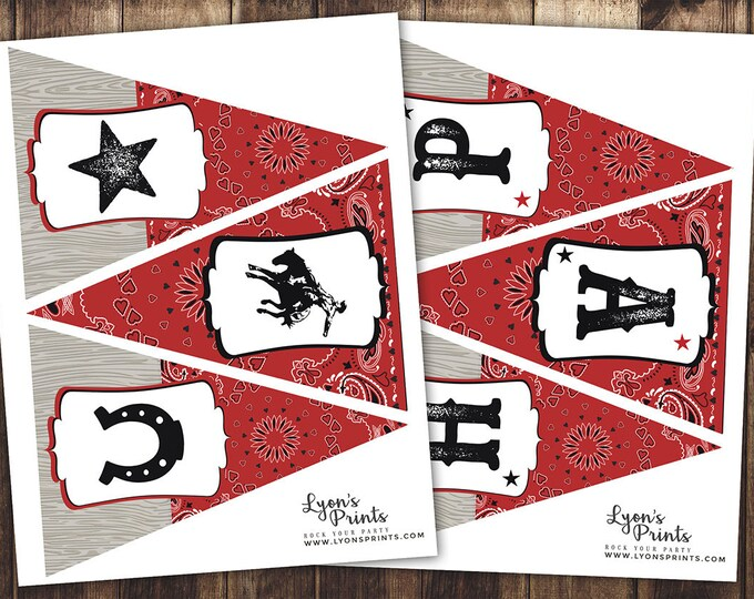 Western party sign, banner, cowboy, birthday decor, Vintage Cowgirl, boy birthday, cowgirl, rodeo, western, rodeo, bunting,