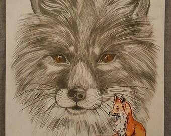 Sly like a fox