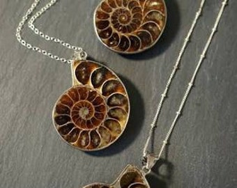 Natural fossil ammonite pendents high quality