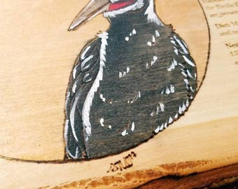 Pileated Woodpecker Audubon Plaque - by Yarrish Arts