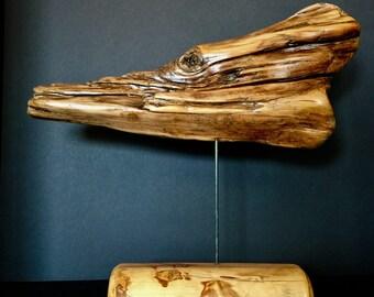 Colorado Dragon Driftwood Sculpture