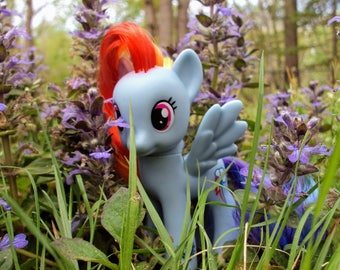 Rainbow Dash, G4, Friendship is Magic, My Little Pony Photography, Digital Download