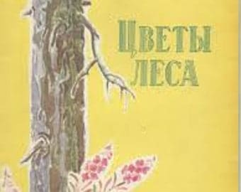 Vintage book with nature illustrations