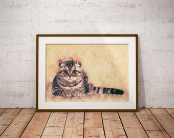 Scottish Fold Cat Watercolor Painting Scottish Fold Cat Art Print Custom Pet Portrait Custom Cat Poster Scottish Fold Cat Abstract Cat Art