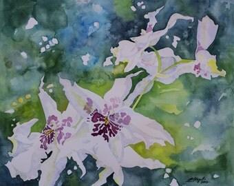 Orchid Dancers watercolor