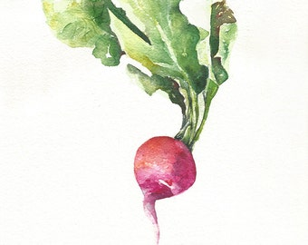 Beet, Watercolor Beetroot, Original Watercolor Painting, A4, Kitchen Decor, Vegetable Art, Purple, Red, Green, Leaf, Home Decor, Gift