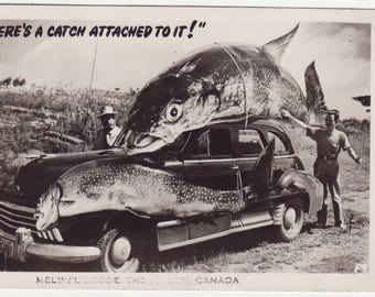 There's A Catch Attached to It! Exaggeration Vintage Real Photo Postcard 1952