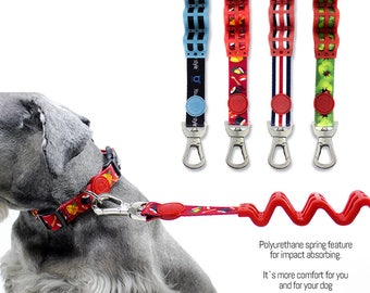Dog Leash with Shock Absorbing Technology