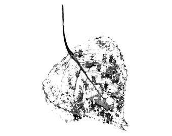 Abstract leaf printable | greyscale - print up to 12x18''/30x45 cm-4 aspect ratios, botanical, abstract, poster, modern, simple, minimalist