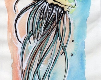 The jellyfish - watercolor drawing