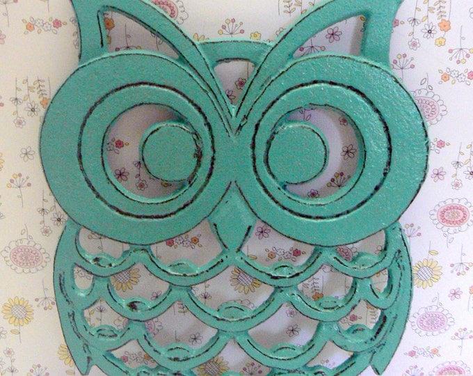 Cast Iron Owl Trivet Aqua Turquoise Shabby Chic Woodland Kitchen Hot Plate Home Decor