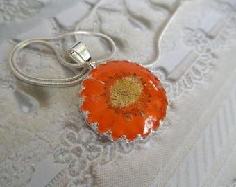 Orange Daisy Pressed Flower Crown Pendant Beneath Glass-Symbolizes Loyal Love,Innocence-April's Birth Flower-Nature's Wearable Art