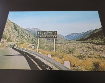 Mill Creek Canyon, Road to San Bernadino Mountains & Big Bear Lake - Vintage California Postcard