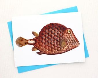 Orange Fish 5x7 Card / Beach Wall Decor - Frameable Tropical Fish Blank Greeting Card Makes a Lovely Gift