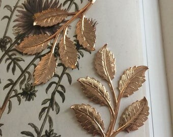 LARGE Spring Beauty Frond Leaf ROSE GOLD (2 pc)