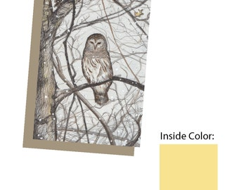 Winter Owl - box set of 10
