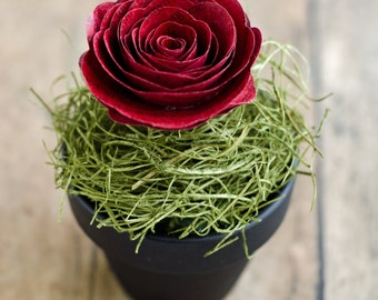 Book Page Floral Arrangement - Color Customized Mini Chalkboard Flower Pot with Book Rose and Moss - Harry Potter, Jane Austen, etc.