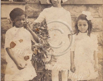 African American  Vintage Photograph, RPPC Three Beautiful Sisters