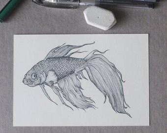Betta Fish Drawing, Betta Fish Illustration, Betta Art, Detailed Betta Drawing, Fish Postcard, Betta Fish Coloring Book, Pen Art, A6 Print