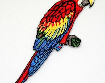 Beautiful vibrant Parrot Colorful Parrot Applique Parrot Purched on a Branch iron on Parrot patch