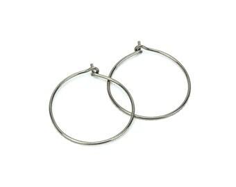 Niobium Hoop Earrings Medium Niobium Hoops for Sensitive Ears, Silver-color Niobium Sensitive Ear Hoops, Silver Hypoallergenic Hoops Earing