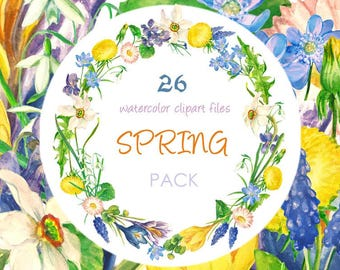 Spring Flowers Clipart, Digital Watercolor Illustration, Floral Clip Art, Hand-painted Flowers, Stock Illustration, Wreath