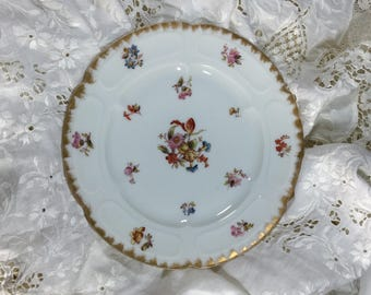 Limoges Plate, Antique French Limoges Plate, Jean Pouyat Limoges Plate, Hand Painted Limoges